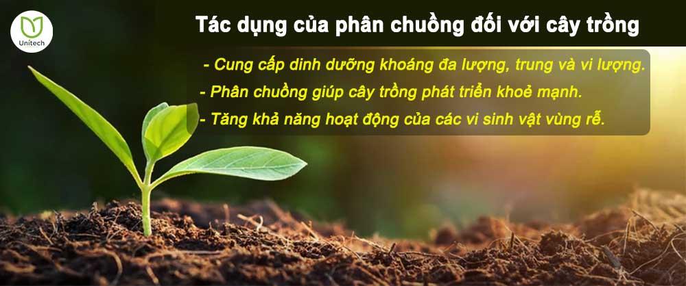 Tác dụng của phân chuồng đối với cây trồng.