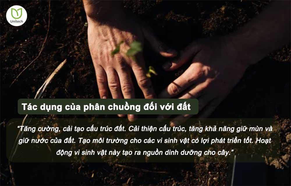 Tác dụng của phân đối với đất.