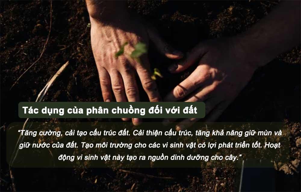 Tác dụng của phân chuồng đối với đất.