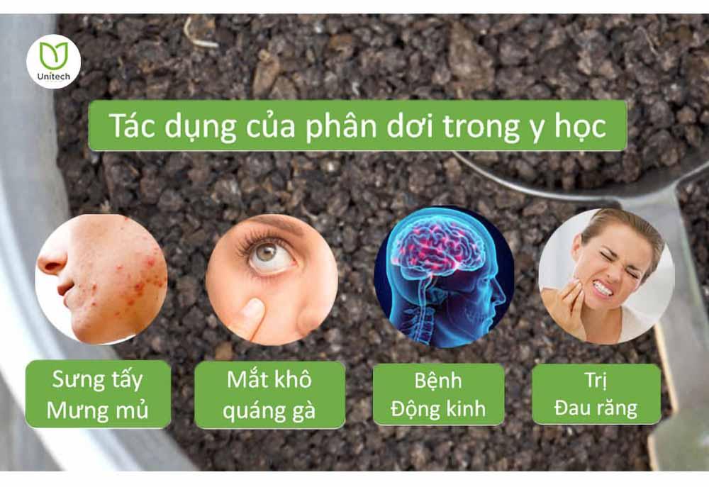 Phân dơi ứng dụng trong y học