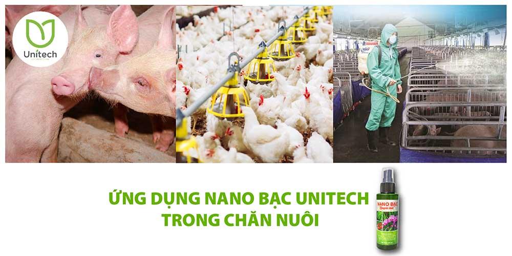 ứng dụng nano bạc trong chăn nuôi