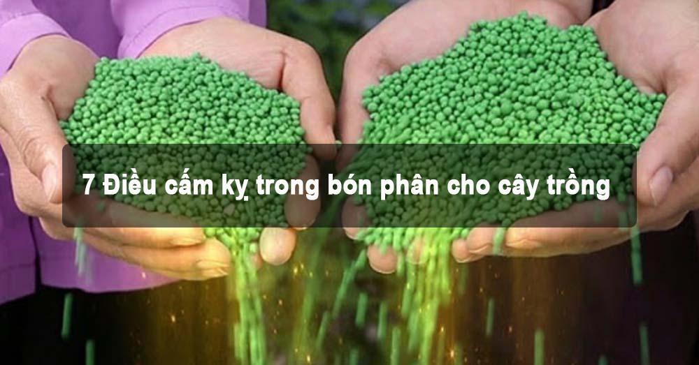 7 Điều cấm kỵ trong bón phân cho cây trồng