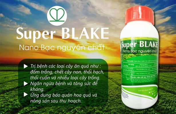 Nano bạc Super Blake