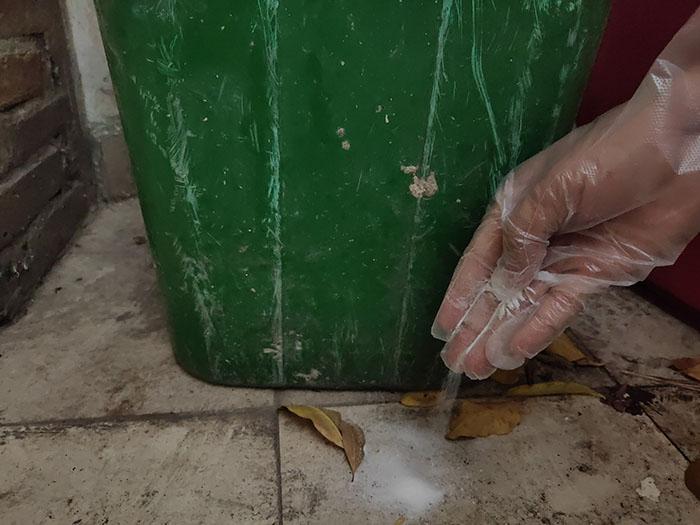 Rải bột diệt côn trùng tại nơi côn trùng gây hại thường xuyên trú ngụ.