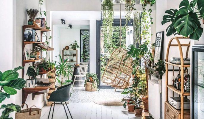 Không gian trồng cây trong nhà