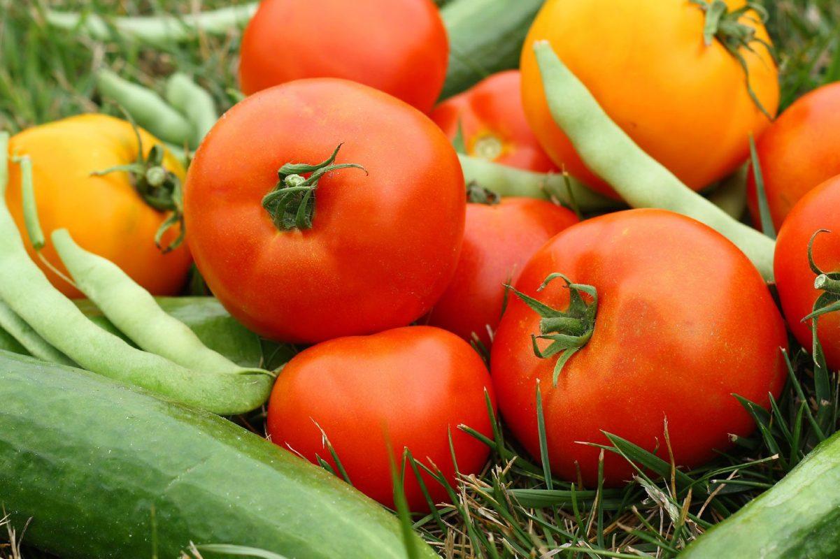 Chọn loại rau củ phù hợp với vườn nhà bạn