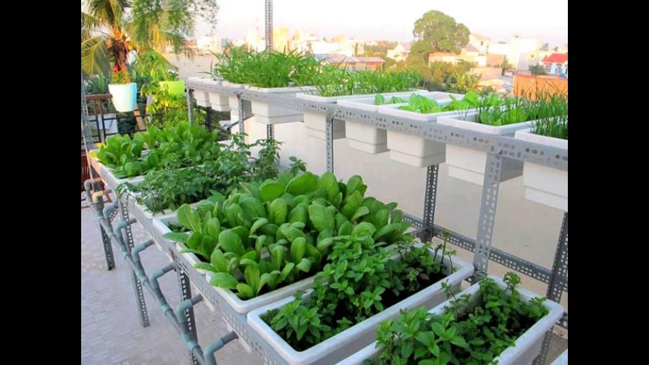 vườn rau nhỏ cho diện tích hẹp
